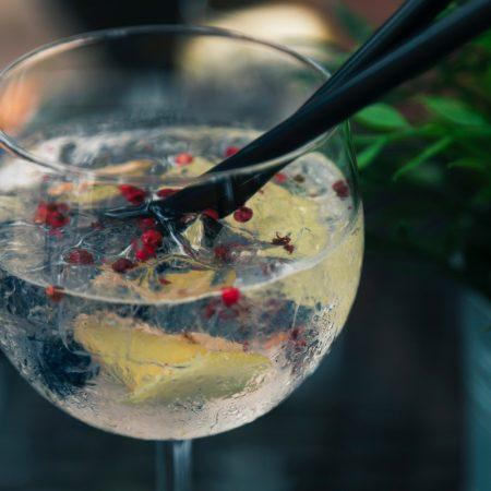 Onde beber gin-tônica em Santos - Revista Nove2