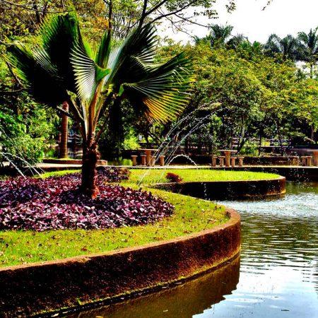 Jardim Botânico Chico Mendes (Santos)
