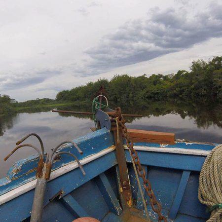 Amazônia Paulista