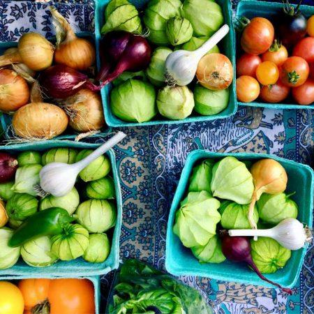 Vegetarianos Estritos