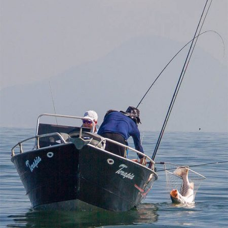 pesca-esportiva-baixada-santista-revista-nove-2