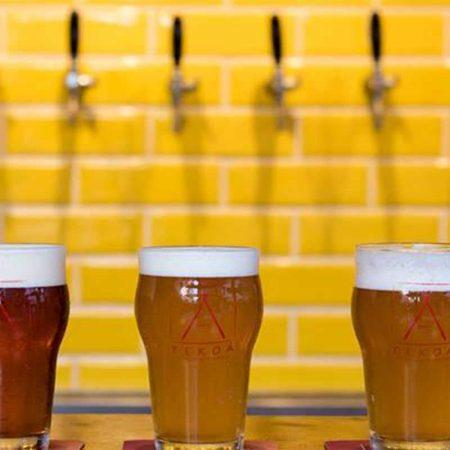 7-cervejas-santistas-revista-nove