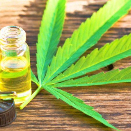 cannabis-medicinal-danilo-ttavares-revista-nove