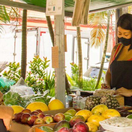 feira-organicos-sao-vicente-revista-nove