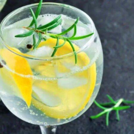 receitas-de-gin-tonica-revista-nove